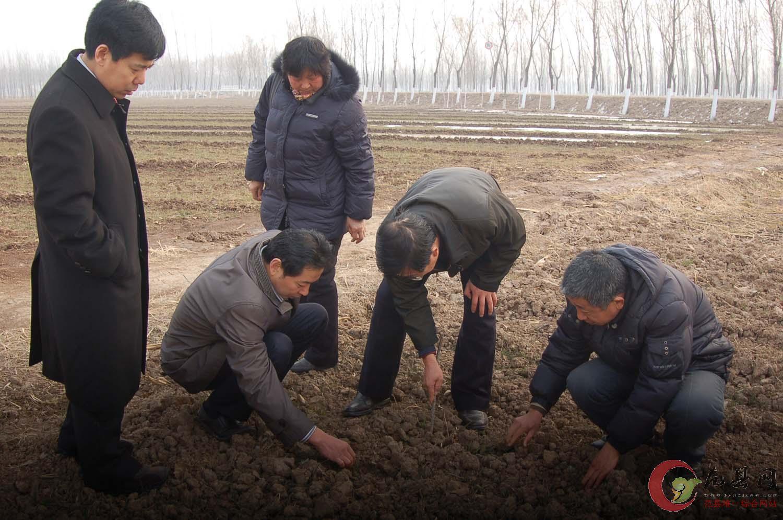 县委书记赵茂辰实地查看抗旱浇麦工作-范县网